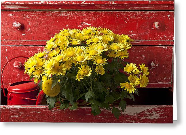 Mood Greeting Cards - Daisy Plant In Drawers Greeting Card by Garry Gay