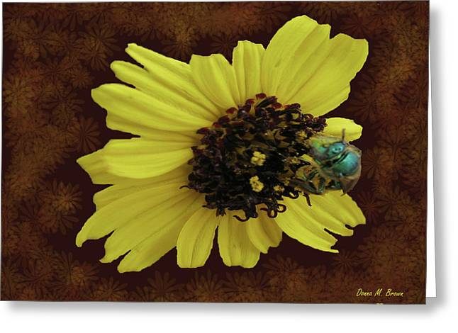 Greeting Card featuring the photograph Daisy With Bee  by Donna Brown