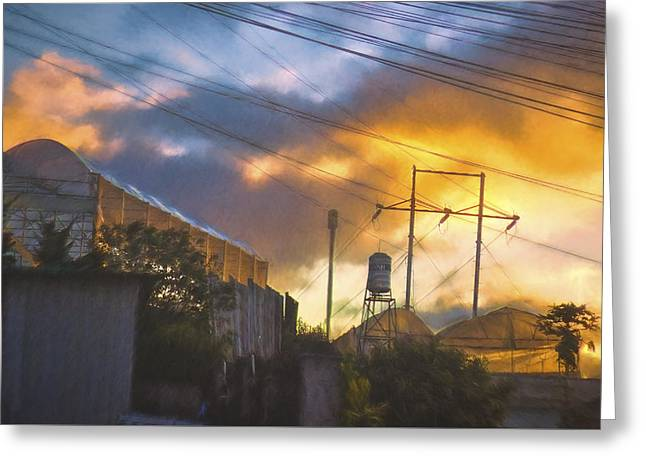 Dalat Sunset Greeting Card by Claude LeTien