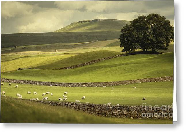Dales Landscape Greeting Card