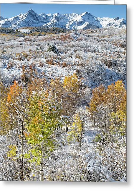 Dallas Divide In October Greeting Card