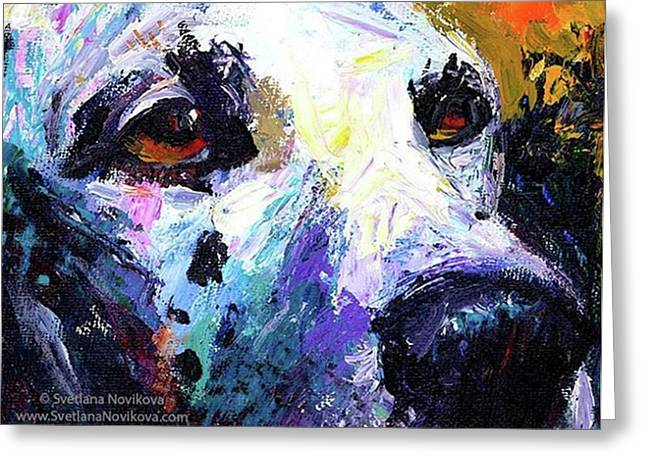 Dalmatian Dog Close-up Painting By Greeting Card