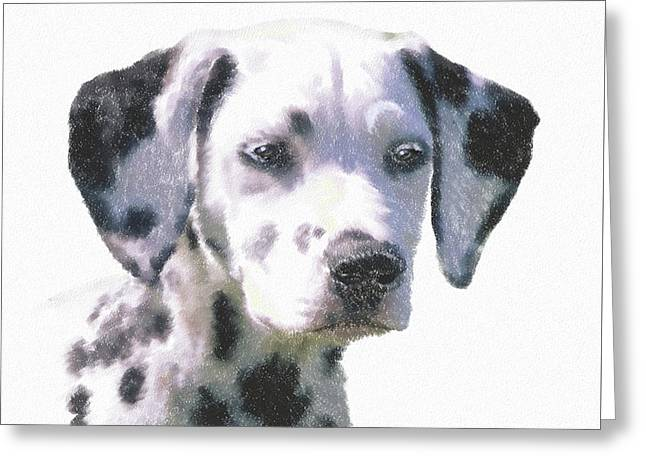 Dalmatian Puppy Greeting Card by Kathie Miller