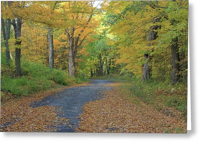 Dana Common Road In Autumn Quabbin Reservoir Greeting Card by John Burk