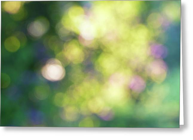 Dance Of Dappled Light Greeting Card