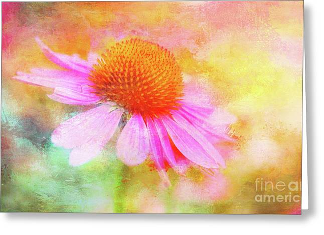 Dancing Coneflower Abstract Greeting Card