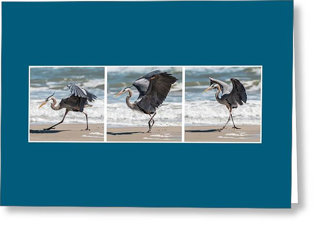 Dancing Heron Triptych Greeting Card