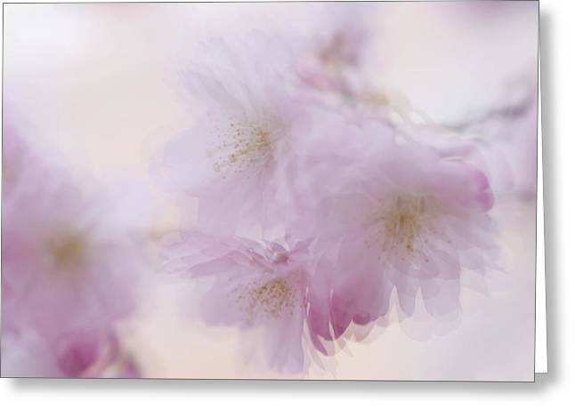 Dancing In The Air. Spring Pastels Greeting Card by Jenny Rainbow