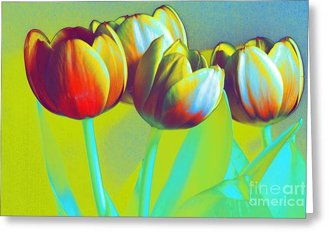 Dancing Tulips Greeting Card by Karen Lewis