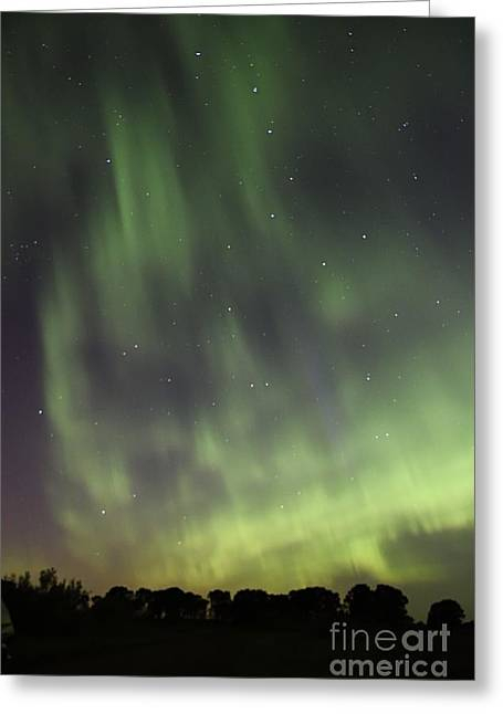 Dancing With The Dipper Greeting Card by Larry Ricker