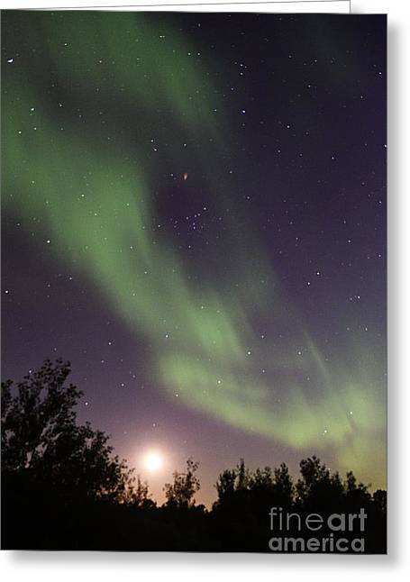 Greeting Card featuring the photograph Dancing With The Moon by Larry Ricker