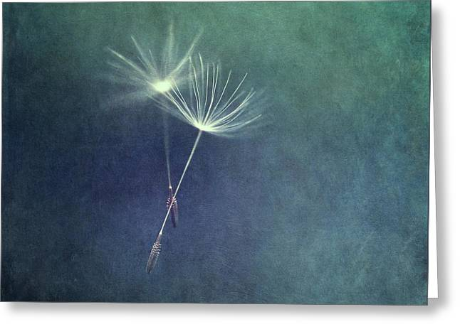 Dancing With The Wind Greeting Card by Priska Wettstein