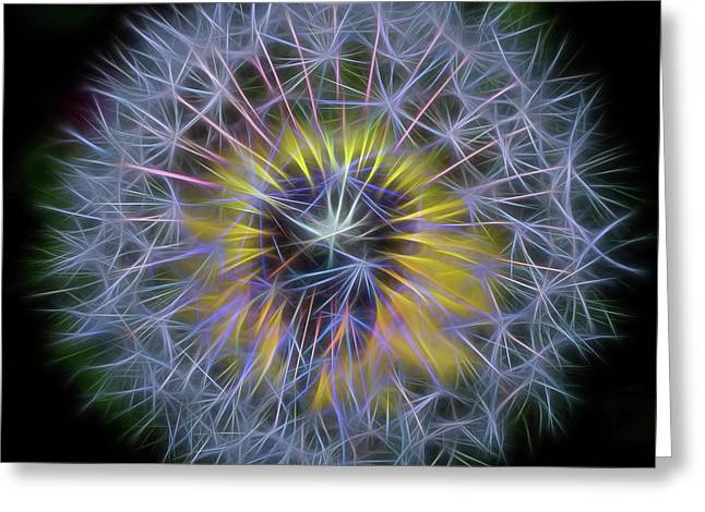 Dandelion Glow Square Greeting Card by Terry DeLuco