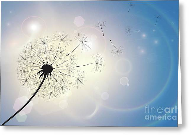 Dandelion In A Summer Breeze Greeting Card