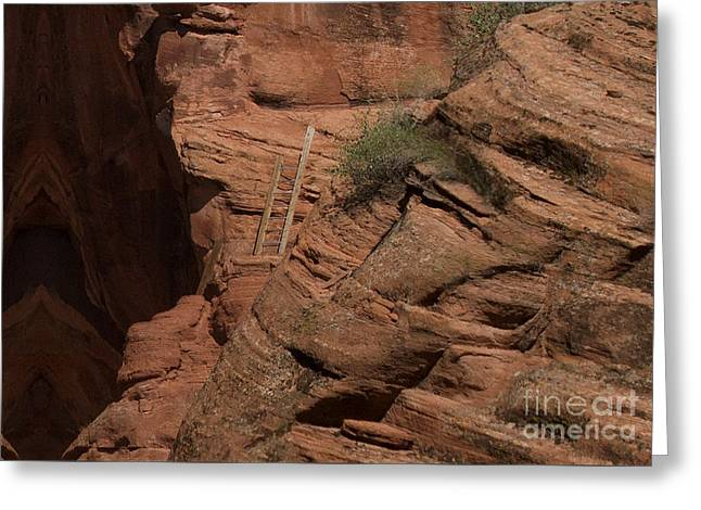 Dangerous Climb Greeting Card by Anne Rodkin