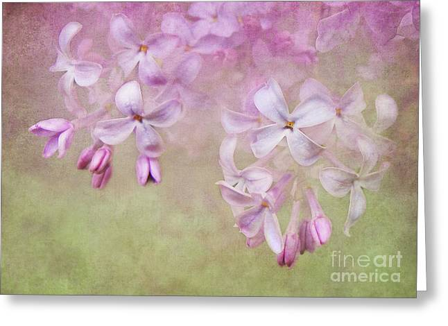 Dangle Me Lilac Greeting Card