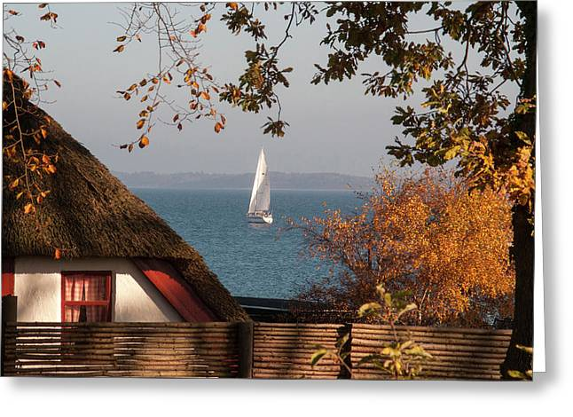 Danish Autumn Sea View Greeting Card by Kim Lessel