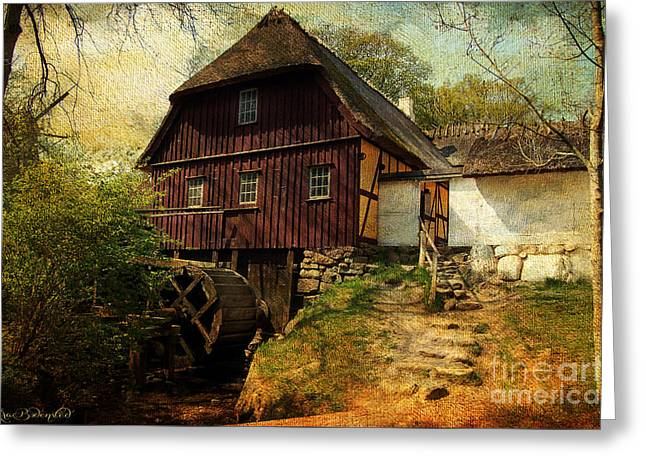 Danish Watermill Anno 1600 Greeting Card