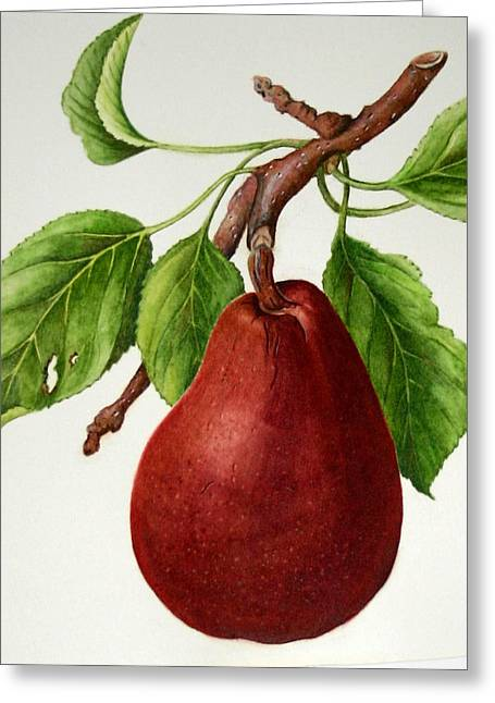 Greeting Card featuring the painting D'anjou Pear by Margit Sampogna