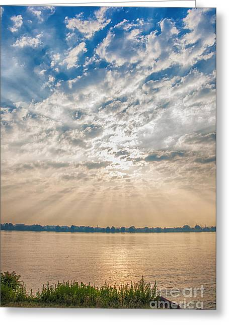 Dappled Dawn Greeting Card by Terry Rowe