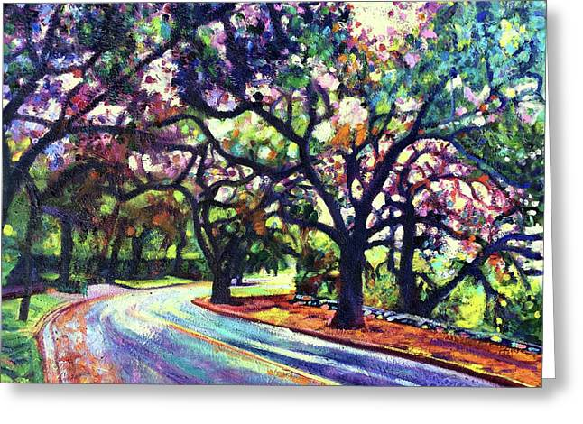 Dappled Lane Through The Arroyo Greeting Card