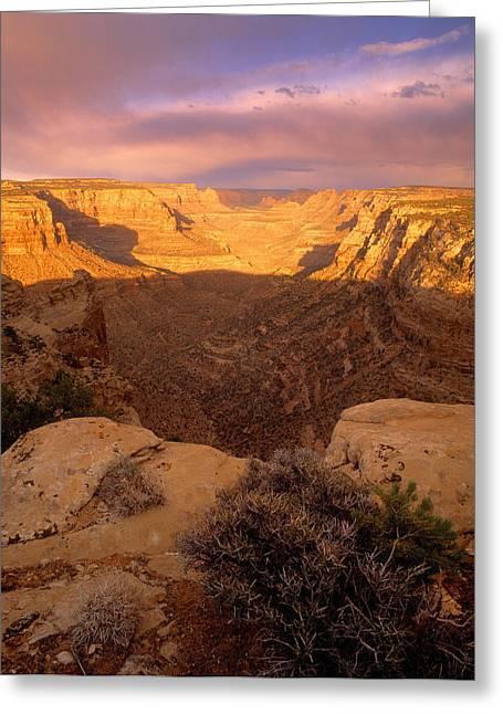 Dark Canyon Sunset Greeting Card