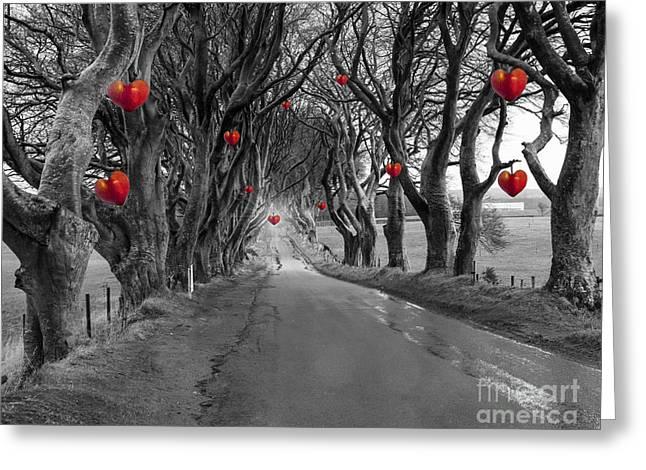 Dark Hedges Greeting Card by Juli Scalzi