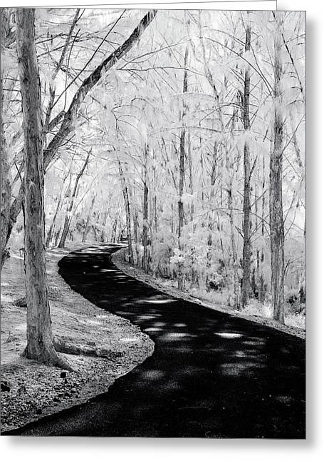 Dark Path Into The Light. Greeting Card by Sean Davey