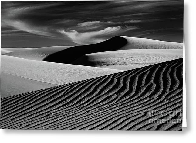 Dark Shadows In The Dunes Greeting Card