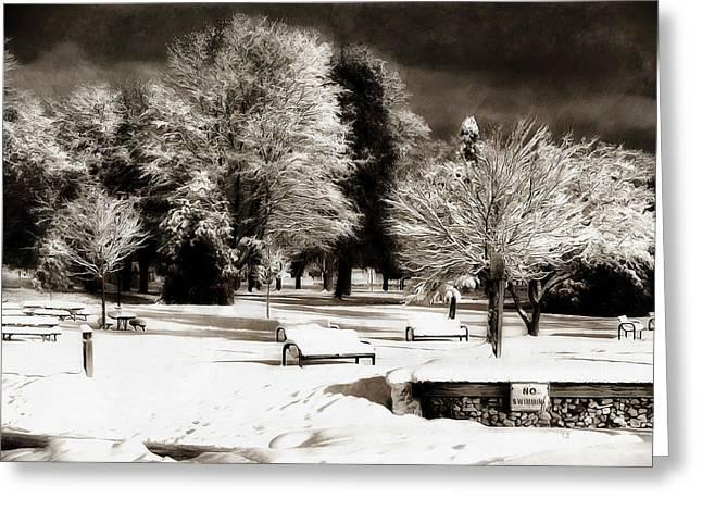 Dark Skies And Winter Park Greeting Card