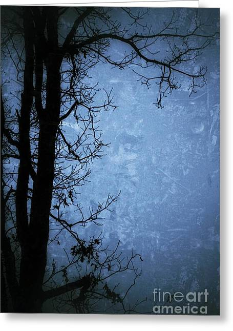 Dark Tree Silhouette  Greeting Card