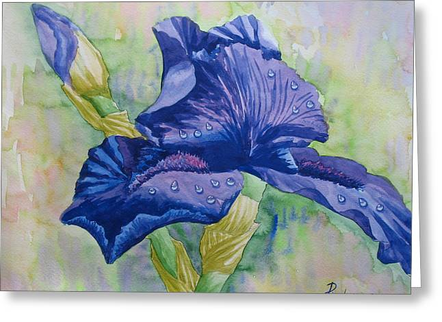 Dark Violet Iris. 2007 Greeting Card by Natalia Piacheva