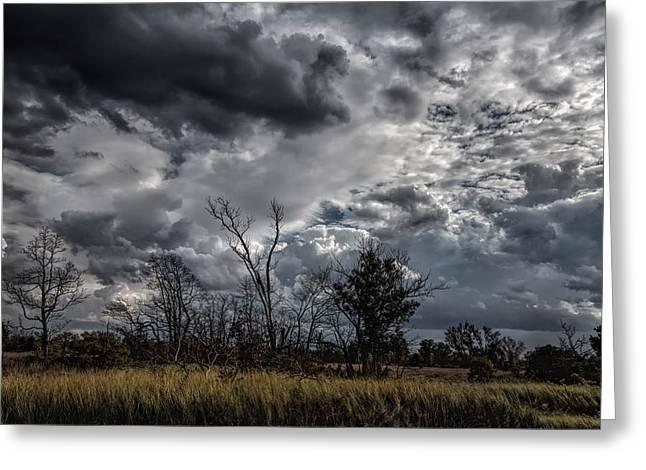 Darkened Skies Greeting Card