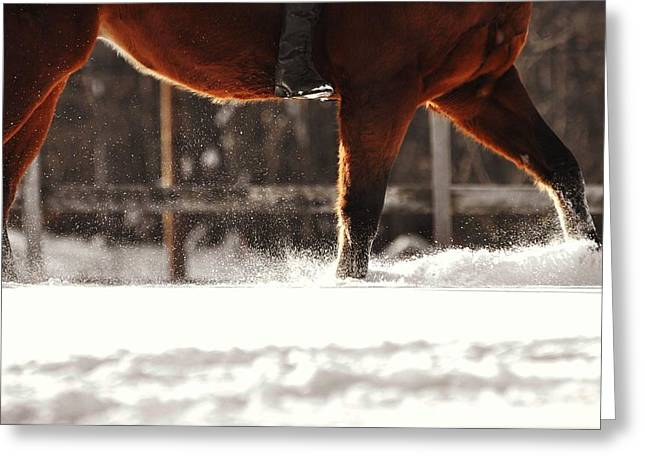 Dashing Through The Snow Greeting Card by JAMART Photography
