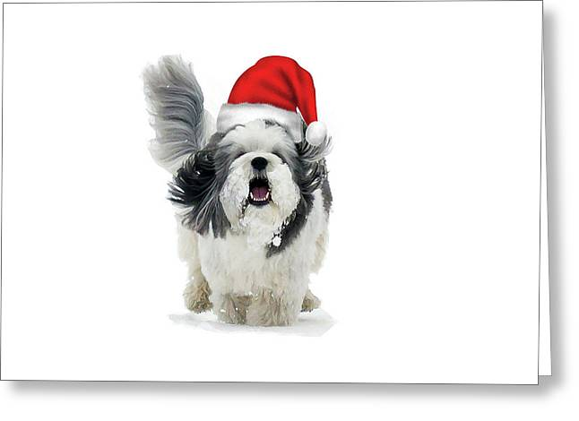 Dashing Through The Snow Greeting Card by Keith Armstrong
