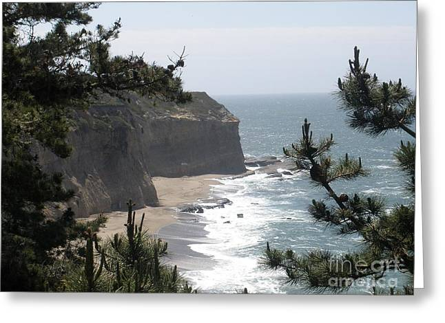 Davenport Beach Greeting Card