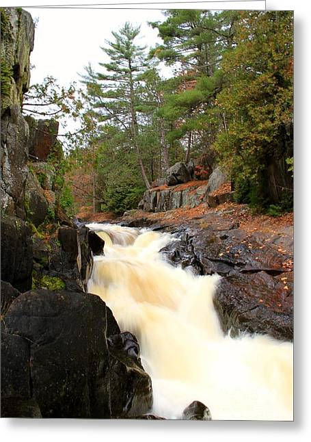 Dave's Falls #7277 Greeting Card by Mark J Seefeldt