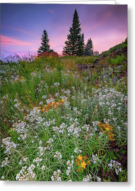 Dawn At Height Of Land Greeting Card