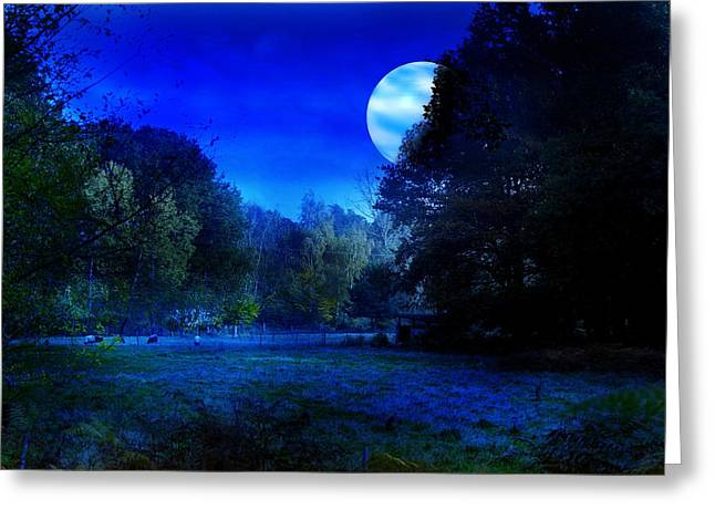Dawn At Night Greeting Card