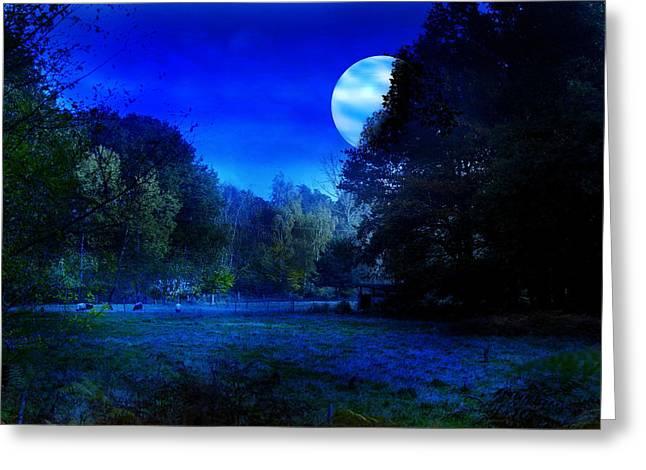 Dawn At Night Greeting Card