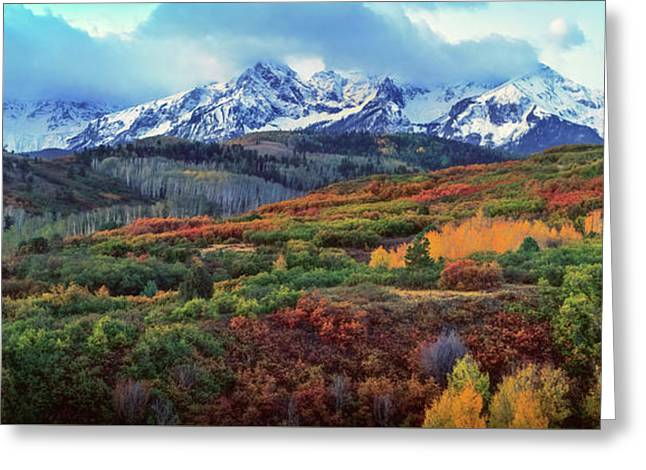 Dawn At The Dallas Divide Panoramic Greeting Card