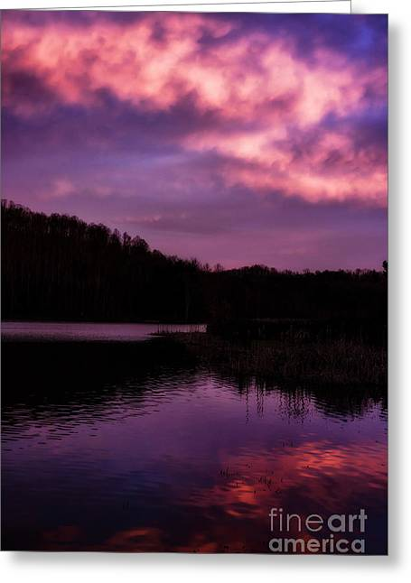 Greeting Card featuring the photograph Dawn Big Ditch Wildlife Management Area by Thomas R Fletcher