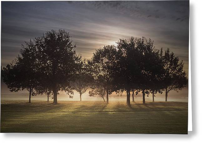 Dawn Greeting Card by Chris Fletcher