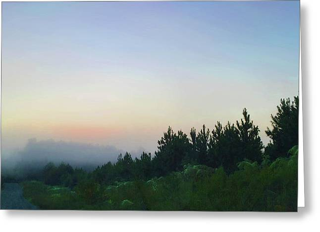Dawn In Chatham Greeting Card by Gina Harrison