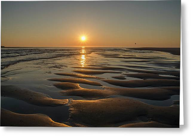 Dawn In Strathmere Greeting Card by Bill Cannon