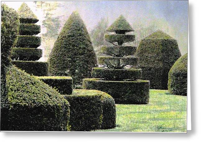 Dawn In A Topiary Garden   Greeting Card by Angela Davies