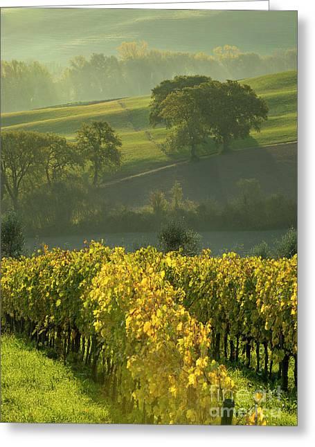 Dawn In Tuscany Greeting Card