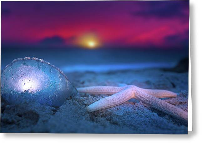 Greeting Card featuring the photograph Dawn Of The Warriors by Mark Andrew Thomas