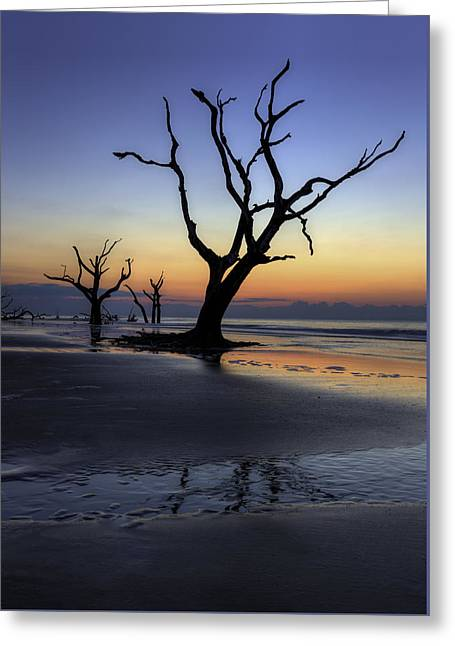 Dawn On Bull Island Greeting Card