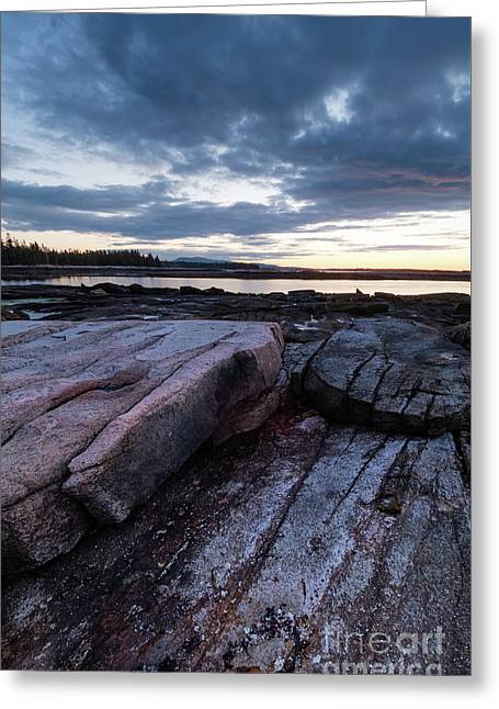 Dawn On The Shore In Southwest Harbor, Maine  #40140-40142 Greeting Card